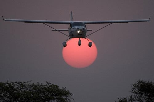 Fly with the Sun by Paul Job