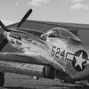 P-51D Mustang 'Miss Torque'