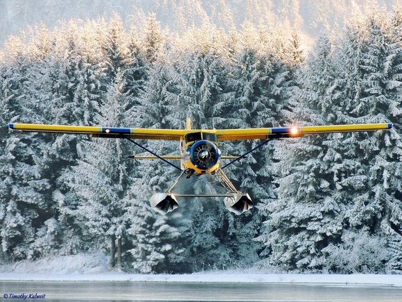 Dehavilland Beaver, landing in The Pond in Juneau